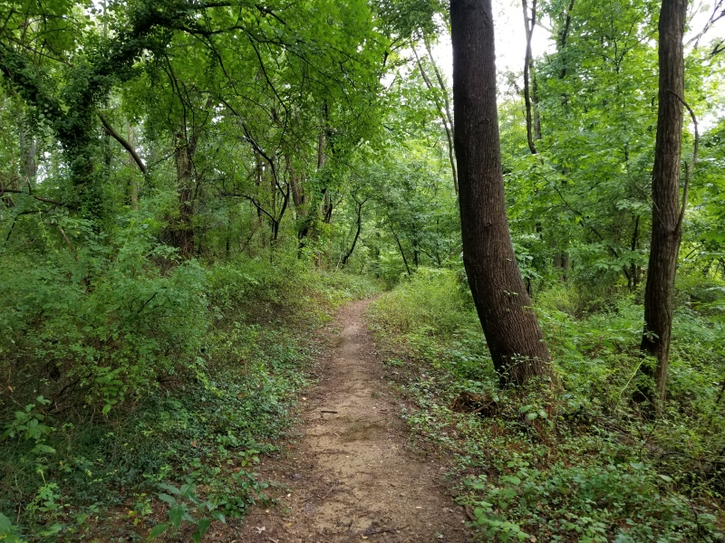 A trail to peace of mind.